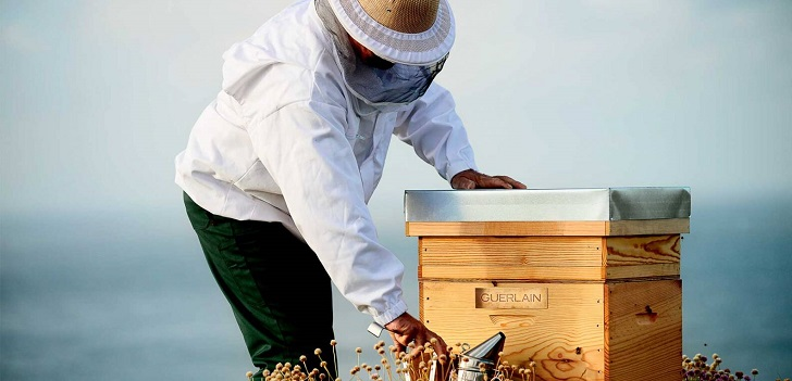 Guerlain and Unesco save the bees